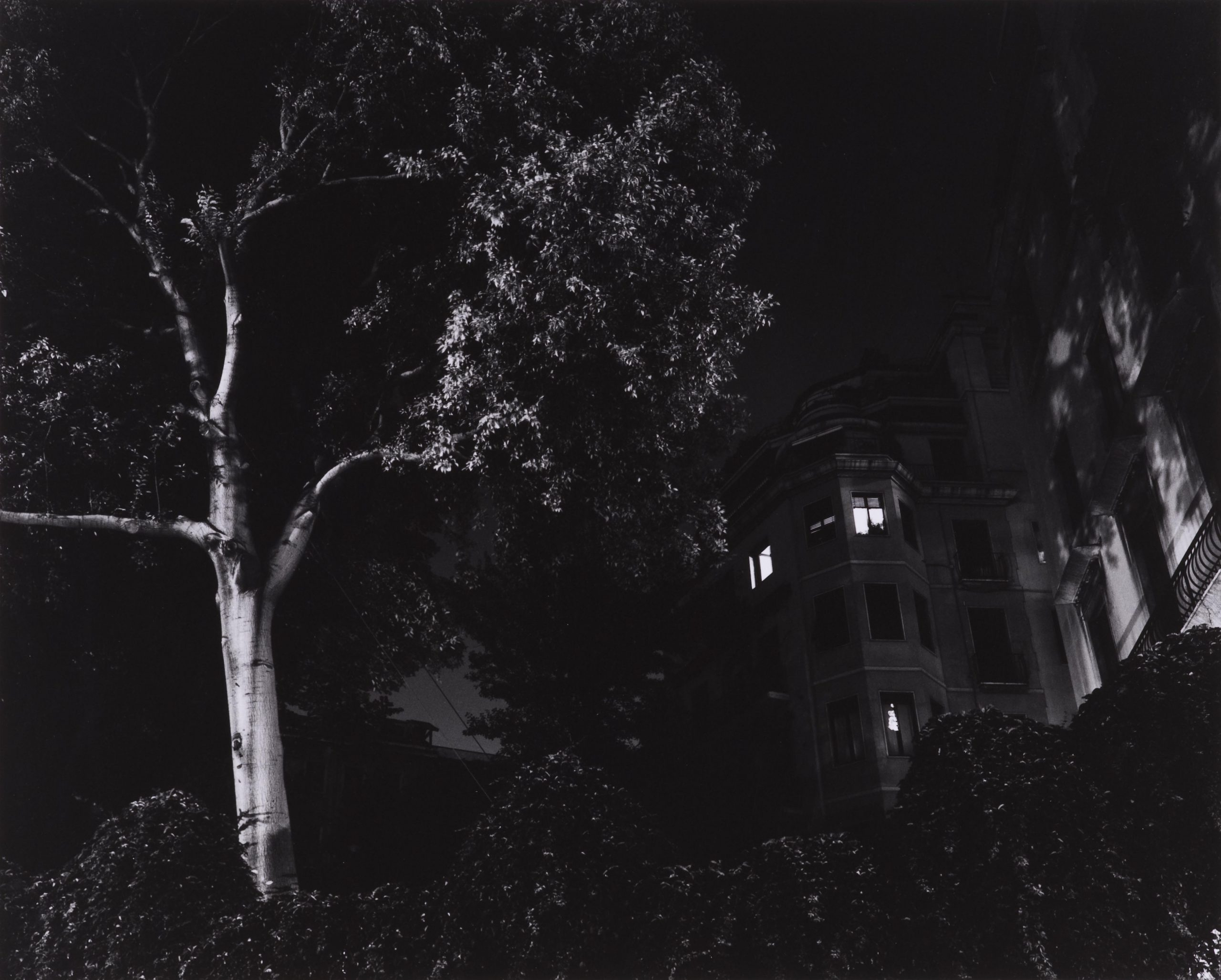 Basilico, Gabriele 26